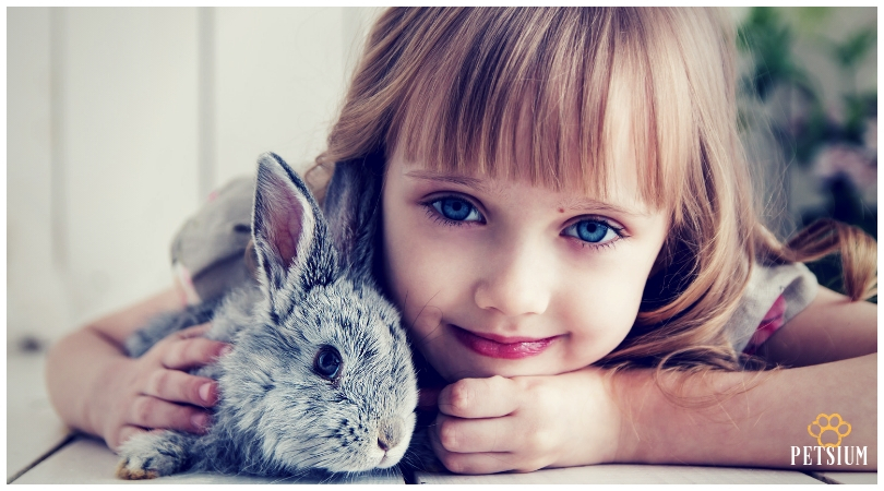 rabbit and child