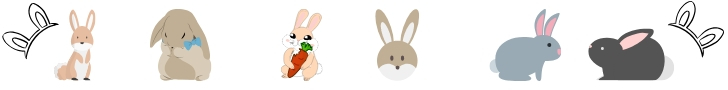 source for your rabbit