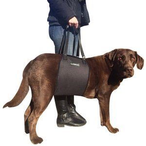 elder dog support sling