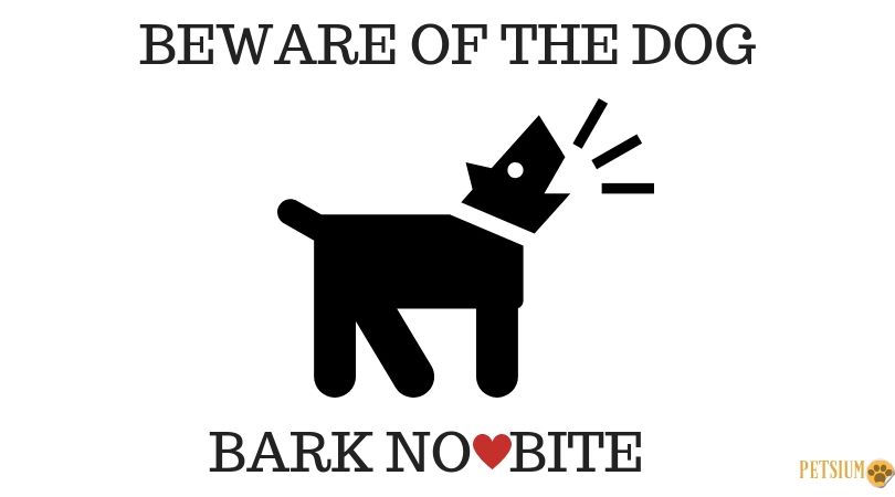 why dogs bark and what you can do