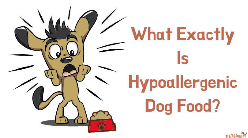 what exactly is hypoallergenic dog food