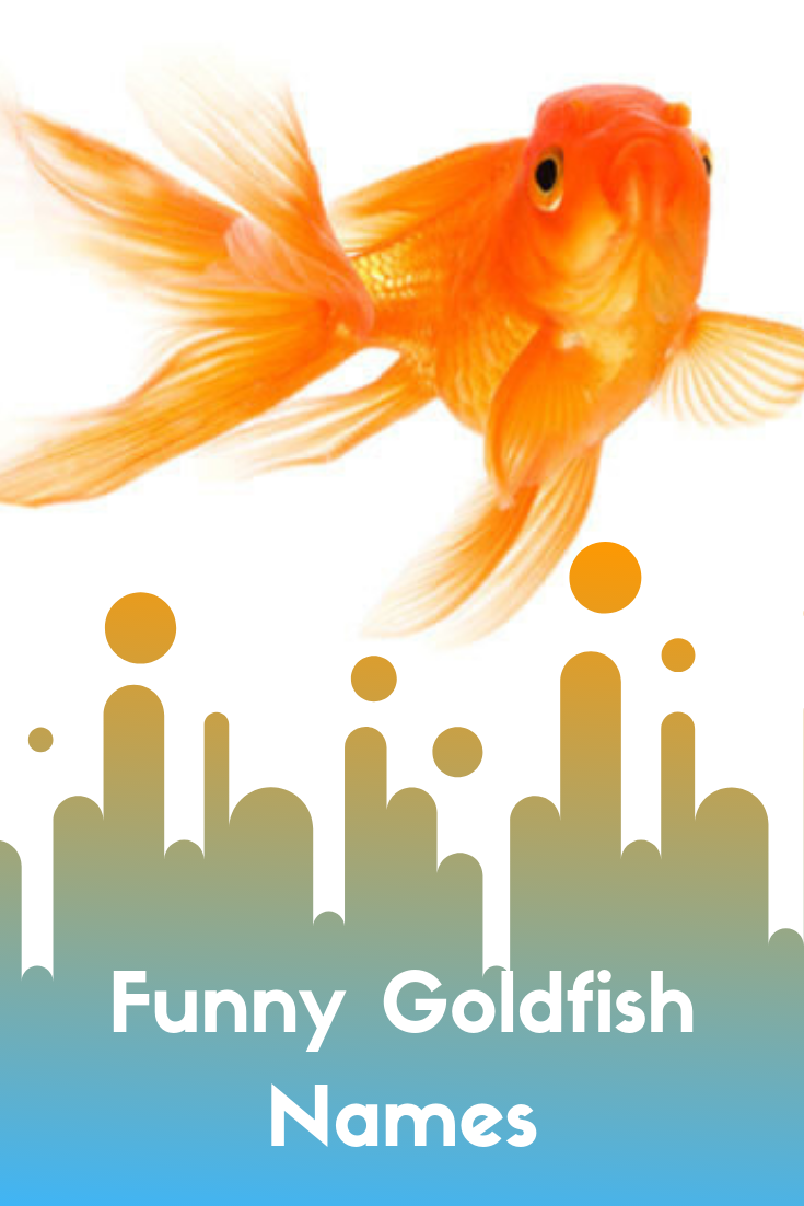 names for goldfish