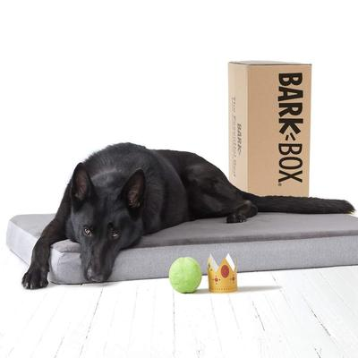 BarkBox 4 inches Orthopedic Memory Foam Dog Bed with Washable Cover