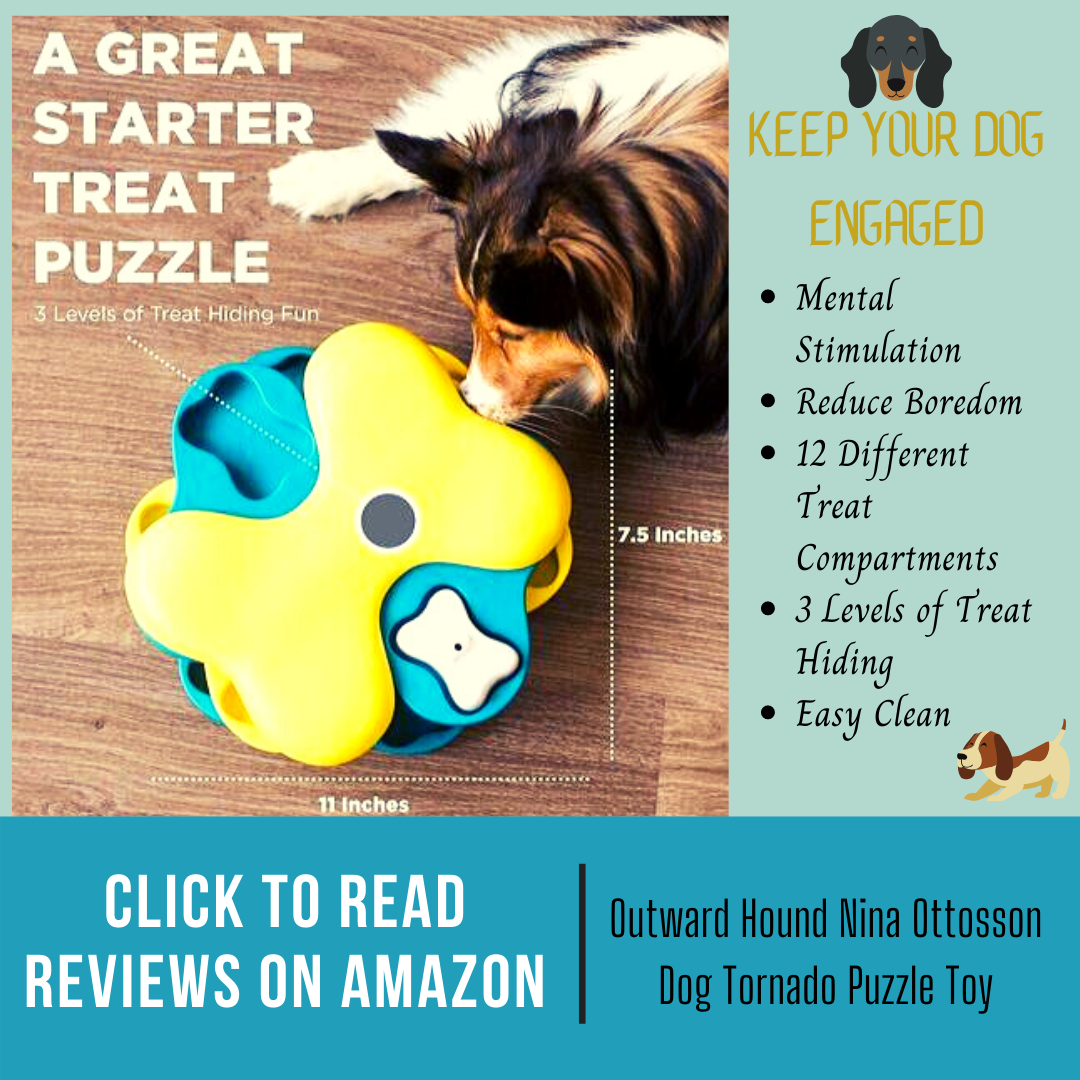 tornado interactive dog toy by outward hound