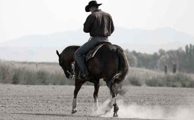 proper horse hoof care