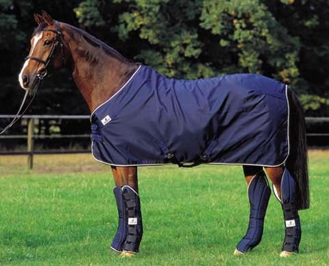 Horse-Blanket-with-Shipping-Boots
