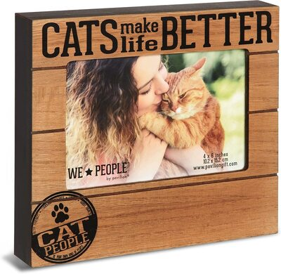 Pavilion Gift Cats Make Life Better Picture Frame