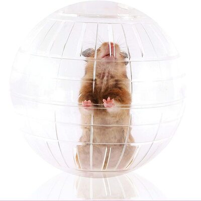 Kaytee Clear Run About Ball for Hamsters