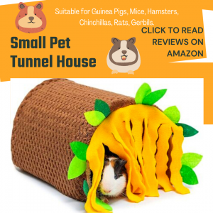 small pets tunnel house